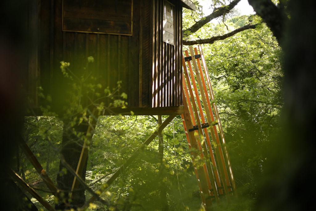 Une Cabane à La Sainte-Baume
